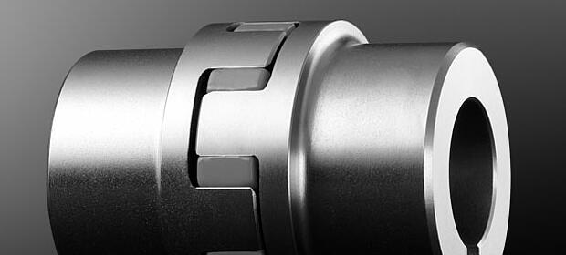 Elastische Klauenkupplungen ROTEX Standard grau von KTR Systems GmbH